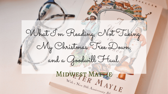 What I'm Reading, Not Taking My Christmas Tree Down, and a GoodwillHaul.